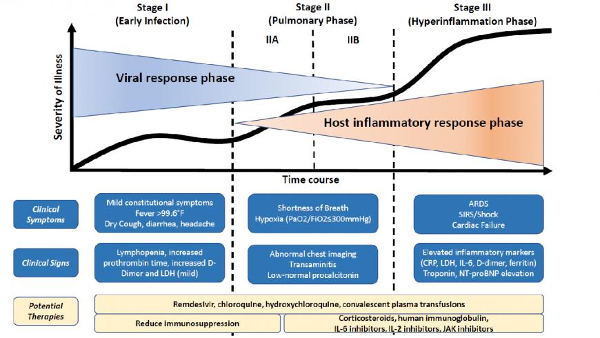 Revisión diagnóstica y terapéutica frente a la infección viral por COVID-1